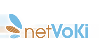 netVoKi Logo